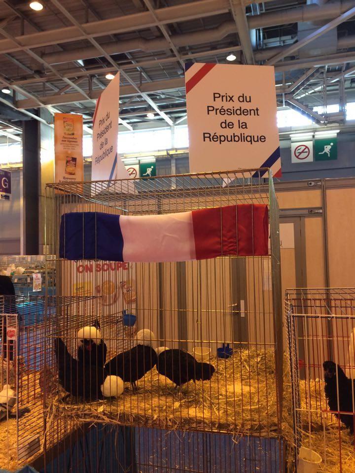 Salon de l 39 agriculture - Prix de l entree du salon de l agriculture ...