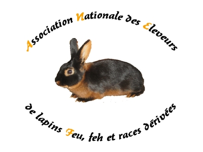 Lapin datant Agence